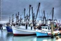 The Old Fishing Fleet - A Dying Breed